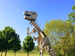 teesaurus-park-middlesbrough-route